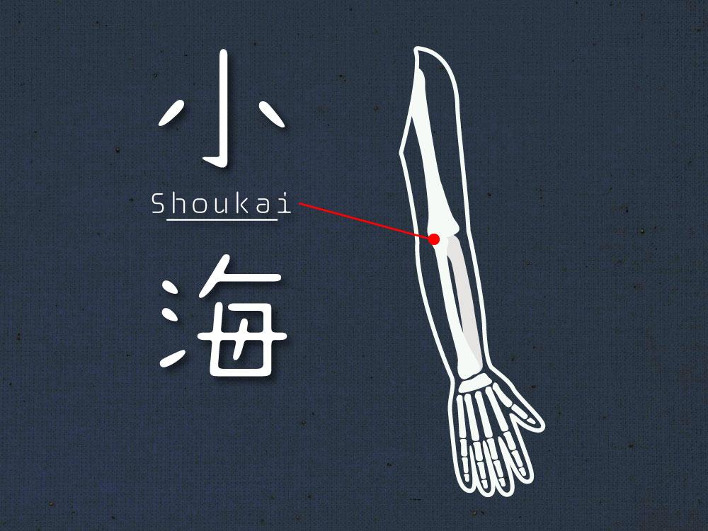 尺骨神経痛、肘関節炎やリュウマチなどに効果があるツボ「小海」(しょうかい)